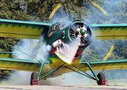 Услуги по защите растений самолетами Ан-2