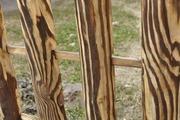 Забор из дерева ограда паркан Тин