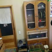 Продам клетку для шиншилл.  Шкаф-клетка разделена на два отделения. Ве